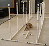 Indoor/Outdoor Dog Agility Weave Poles - Set of 12