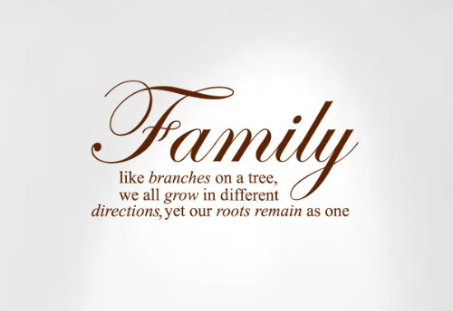 Innovative Stencils 1134 24 mbrown  Family Like Branches on a Tree Wall Decal Sticker Quote, 24 and 34-Inch Wide by 12 and 34-Inch High, Matte Brown (Brown Decal Wall Stickers compare prices)