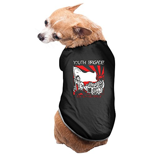 youth-brigade-punk-rock-band-sink-with-kalifornija-custom-dog-clothes