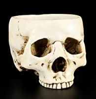 Human Head Skull Skeleton Design Resin Halloween Candy Bowl Trinket Statue from PTC