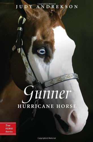 Gunner: Hurricane Horse (True Horse Stories)