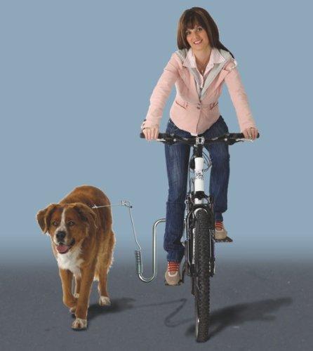 hunde fahrrad abstandhalter ersatzteile zu dem fahrrad. Black Bedroom Furniture Sets. Home Design Ideas
