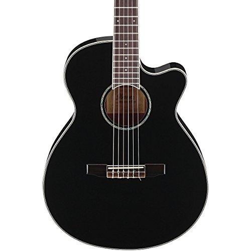 Ibanez AEG10NII Nylon String Cutaway Acoustic-Electric ...