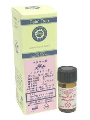 Palm Tree イランイランR 5ml