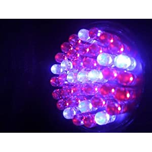 Acne Blue red-colored LED mild treatment 38 LED Bulb for treatment pimple and pimple Scars 415nm 660nm