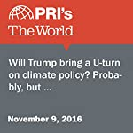 Will Trump Bring a U-Turn on Climate Policy? Probably, but… | Peter Thomson