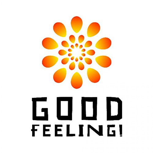 Good Feeling [Explicit] (Feeling Good Song compare prices)