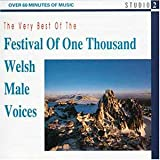 The Very Best Of Welsh Male Voices