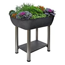 Elevated Garden365 Container
