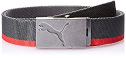 Puma Antique Silver, Steel Grey and Pu Polyester Unisex Belt (5259508)