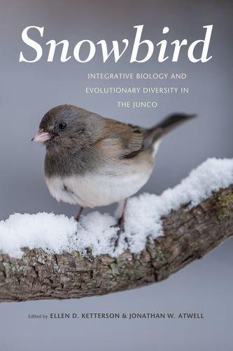 Snowbird: Integrative Biology and Evolutionary Diversity in the Junco