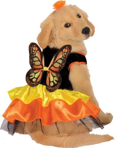 Rubies Costume Halloween Classics Collection Pet Costume Monarch Butterfly