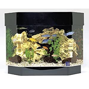 Seaclear 10 gal flat back hexagon mini kit for 20 gallon hexagon fish tank