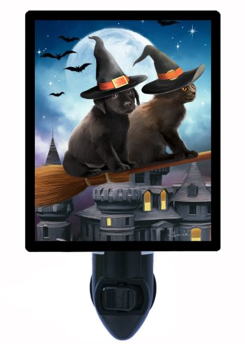 Halloween Night Light - Have Broom Will Travel - Dog And Cat front-1070918