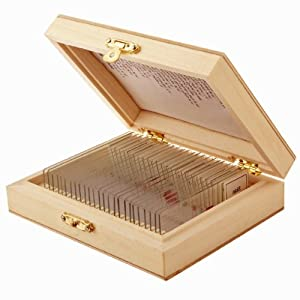 AmScope 25pc Assorted Specimen Collection of Glass Prepared Microscope Slides with Storage Case