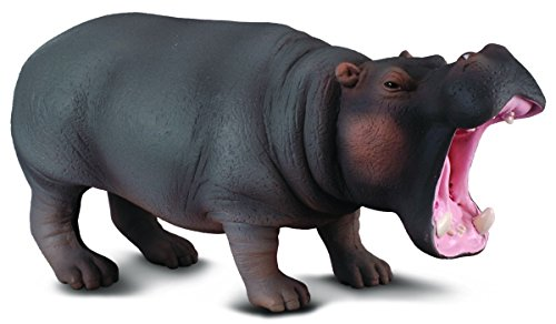 CollectA Hippopotamus Figure - 1