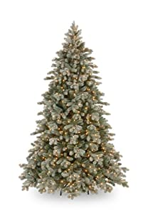 #!Cheap National Tree PECSF1-300-75 Feel Real Frosted Colorado Fir 750 Clear Lights, 7-1/2-Feet