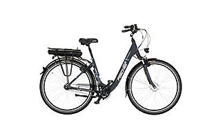 Fischer Damen E-bike City 7-Gang Proline ECU 1401, mehrfarbig, 28 zoll, 19133