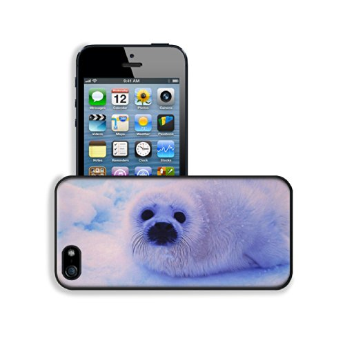 Animal Wildlife Seal Snow Cute White Furry Baby Apple Iphone 5 / 5S Snap Cover Premium Leather Design Back Plate Case Customized Made To Order Support Ready 5 Inch (126Mm) X 2 3/8 Inch (61Mm) X 3/8 Inch (10Mm) Luxlady Iphone_5 5S Professional Case Touch A front-1078146