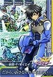 ガンダムトライエイジ/鉄血の5弾/TK5-079/刹那・F・セイエイ P