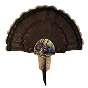 Walnut Hollow Turkey Mount Display Kit with Image by Rosemary Millette, Solid Oak, 11-1/2 by 7-1/4 by 1-5/8-Inch