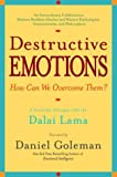 Destructive Emotions: A Scientific Dialogue With the Dalai Lama on How Can We Overcome Them? (0553381059) by Goleman, Daniel