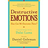 Destructive Emotions: A Scientific Dialogue with the Dalai Lama ~ Daniel Goleman