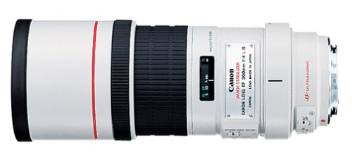 Canon EF 300mm f/4L IS USM Telephoto Lens for Canon SLR Cameras