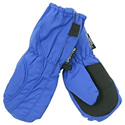 Toddler Boys (2 - 4) Long Thinsulate Lined / Wateproof Ski Mittens - Royal