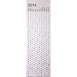 Funny product 2014 Bubble Calendar- A Poster Sized Wall Calendar with a Bubble to Pop Everyday