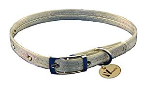 Vedante Super Reflective Dog Collar with Bonus Glow in the Dark Tag (X-Large, Silver)