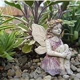 Fairy Garden Janell