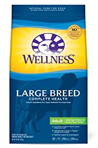 Wellness Complete Health Natural Dry Dog Food, Large Breed Health Recipe, 30-Pound Bag
