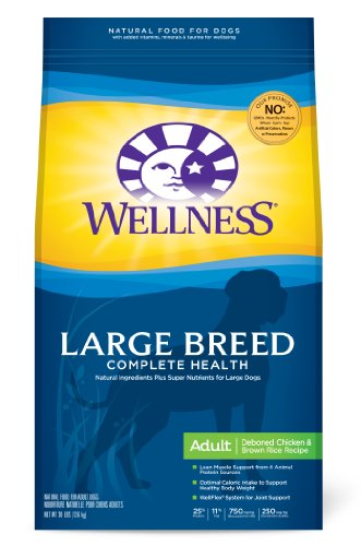 Wellness Large Breed Complete Health Recipe, 30-Pound Bag