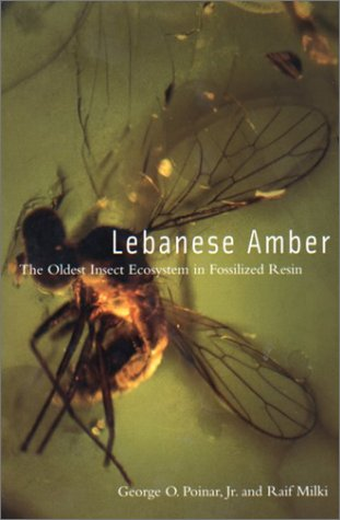 lebanese-amber-the-oldest-insect-ecosystem-in-fossilized-resin