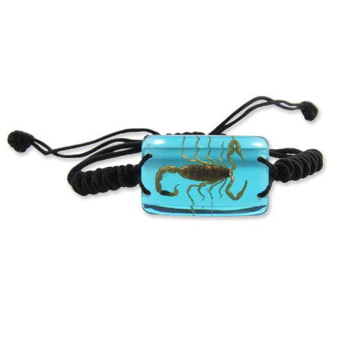 REALBUG Gold Scorpion Bracelet, Clear Blue