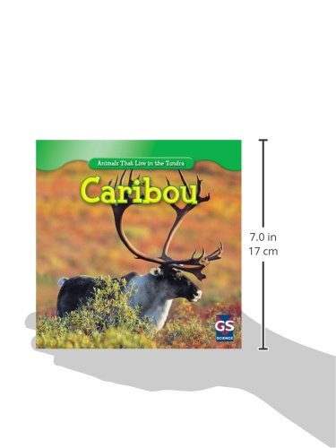 Caribou (Animals That Live in the Tundra)