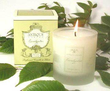 Antique Garden Eucalyptus Mist 233g/8.2oz Perfumed