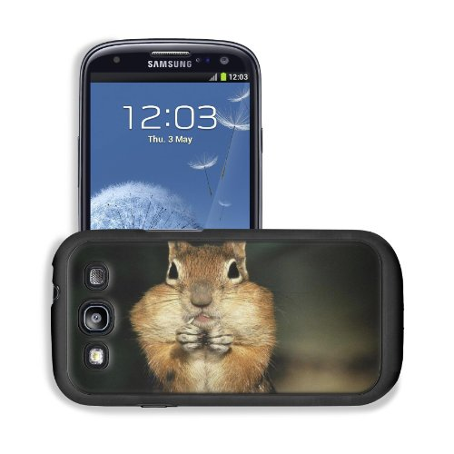 Brown Squirrel Stuffed Checked Nuts Samsung I9300 Galaxy S3 Snap Cover Premium Leather Design Back Plate Case Customized Made To Order Support Ready 5 3/8 Inch (136Mm) X 2 7/8 Inch (73Mm) X 7/16 Inch (11Mm) Msd Galaxy_S3 Professional Cases Touch Accessori front-1065482
