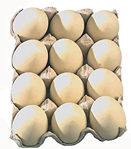 #!Cheap Dozen Wooden Chicken Faux Fake Eggs Kitchen Decor Beige