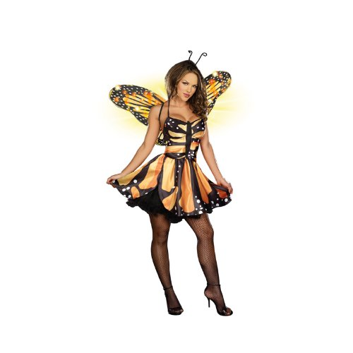 Dreamgirl Women's Monarch Fairy Dress, Black/Orange/Yellow, Large (Fairy Of Dreams Costume)