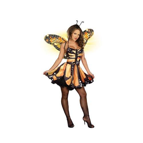 Dream (Monarch Butterfly Fairy Costume)