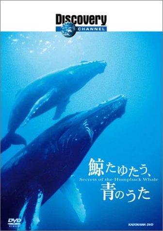 ディスカバリーチャンネル 鯨たゆたう、青のうた [DVD]