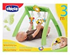 Chicco-Spring Activity Gym