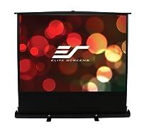 "Elite Screens F100XWH1 ezCinema Plus Series Portable Projection Screen (100"" Diag. 16:9 49""Hx87.2""W)"