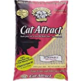 Precious Cat Cat Attract Problem Cat Training Litter 60 Pound Value Pack