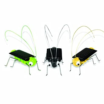 3B Scientific Cute Little Solar Bugs (Pack of 3)