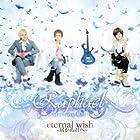 eternal wish~�Ϥ��̷���~(��������)(DVD��)(�߸ˤ��ꡣ)