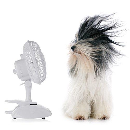 """AMOS 6"""" 15cm Ventilatore a Pinza da Tavolo Scrivania Climatizzatore Elettrico Portatile Regolabile a 2 Velocità per Casa Ufficio"""