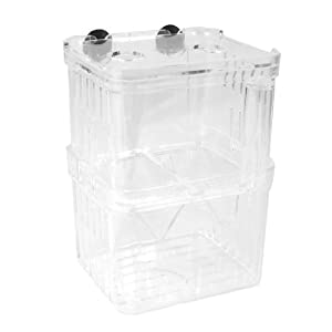 Uxcell Plastic Hang-On Design Separated Fry Fish Breeding Tank, Clear